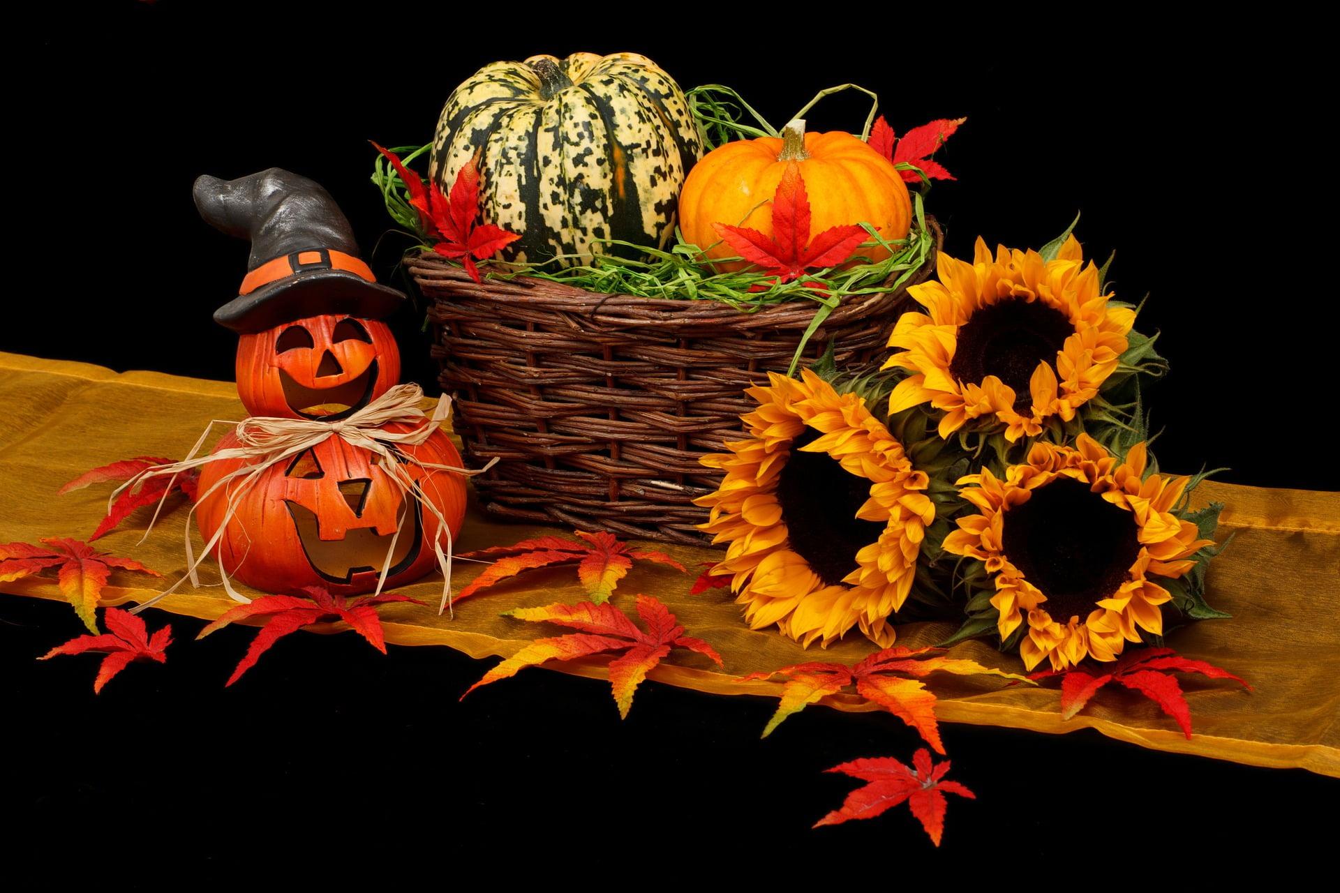 Zero-Waste Halloween Tips